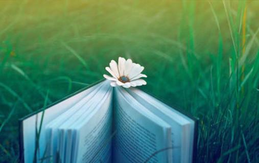 阅读,是为了养育一个孩子的悉数_约读书房