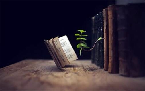 最好的学区房,是家里的书房_约读书房